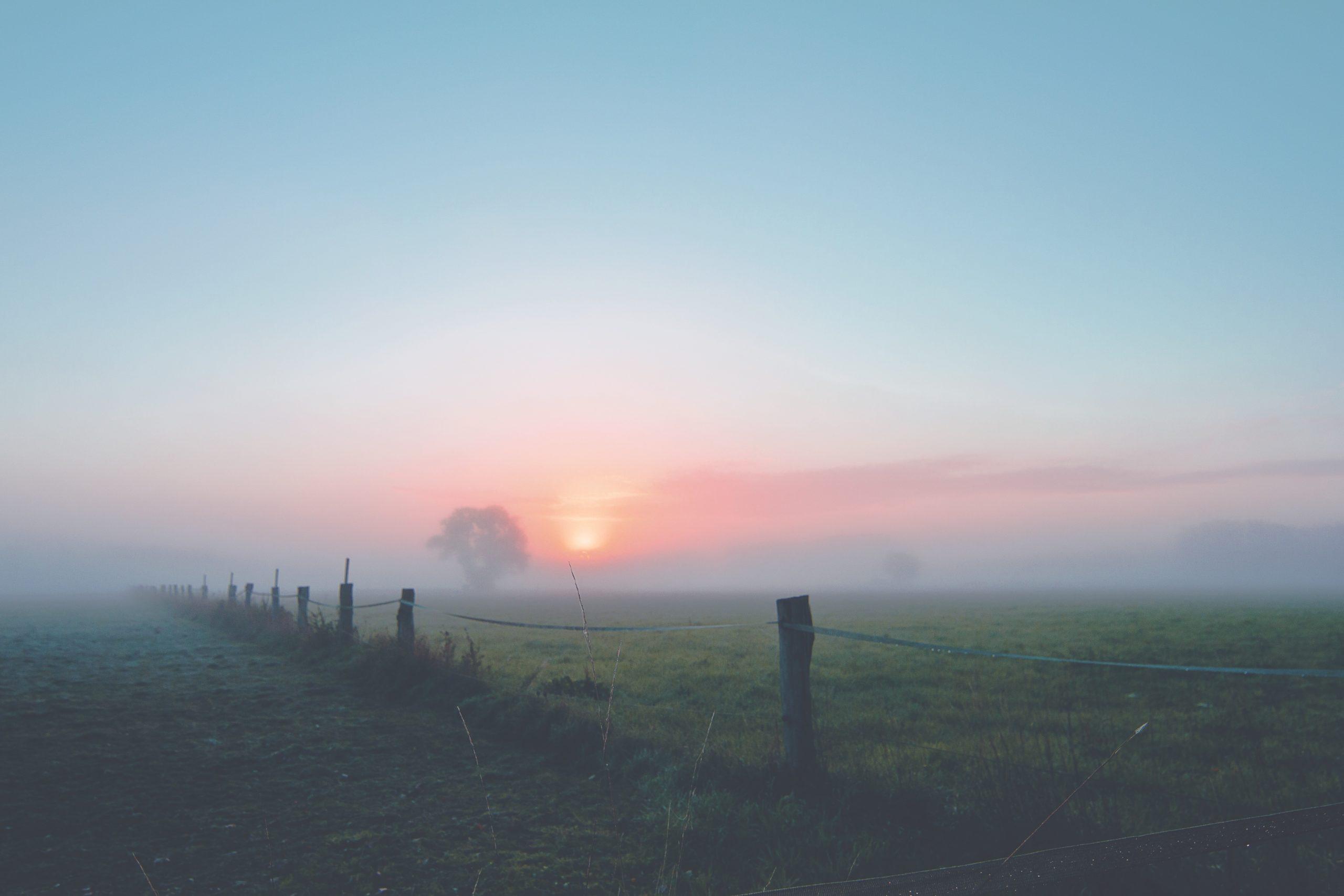 Mist op landschap
